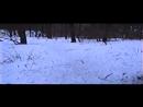 Пророк СанБой – Трава весны (Grey Lenses Remix v1.1)