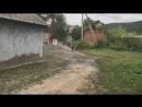 Klx 250 Стант)