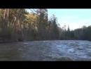 Там где живет медведь Девственная тайга Сплав по таежной реке yklip scscscrp