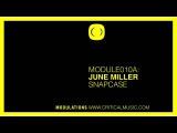 MODULE010 - June Miller - Snapcase Walls Of Jericho - Critical Modulations
