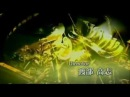 ♫Shin Hokuto No Ken Opening Gackt - Luna english sub♫▐▐▐