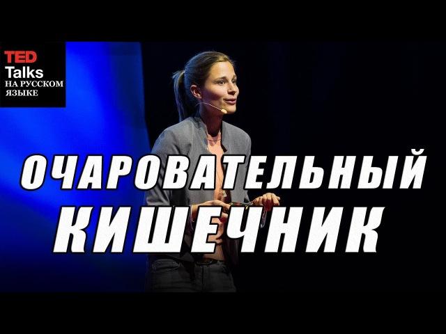 TED на русском ОЧАРОВАТЕЛЬНЫЙ КИШЕЧНИК СРК