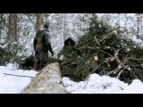 The old way of felling trees (with an axe)