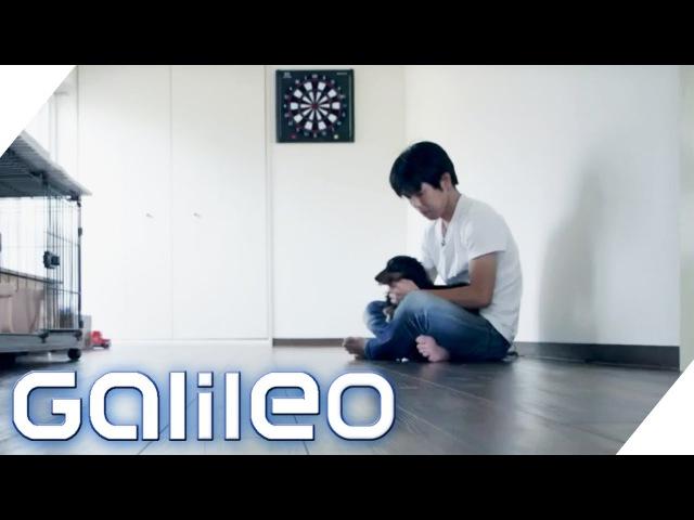 Minimalismus extrem: Minimalismus im Alltag in Japan   Galileo   ProSieben