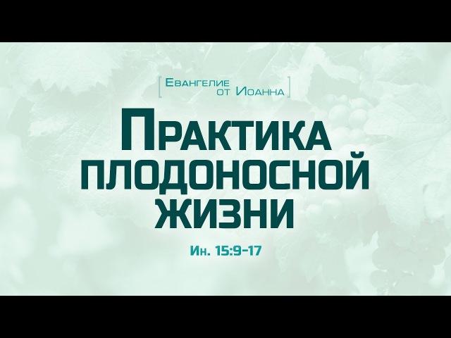 Ев. от Иоанна: 85. Практика плодоносной жизни (Алексей Коломийцев)