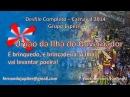 União da Ilha do Governador 2014 - Desfile Completo