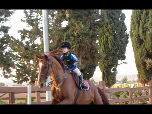 Hussein, Muhammad, Rajaa (bin Talal) on horses