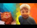 Спасли котёнка Подкидыш Наш новый член семьи Знакомьтесь, Фокс!