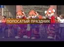 День тигра отметили во Владивостоке
