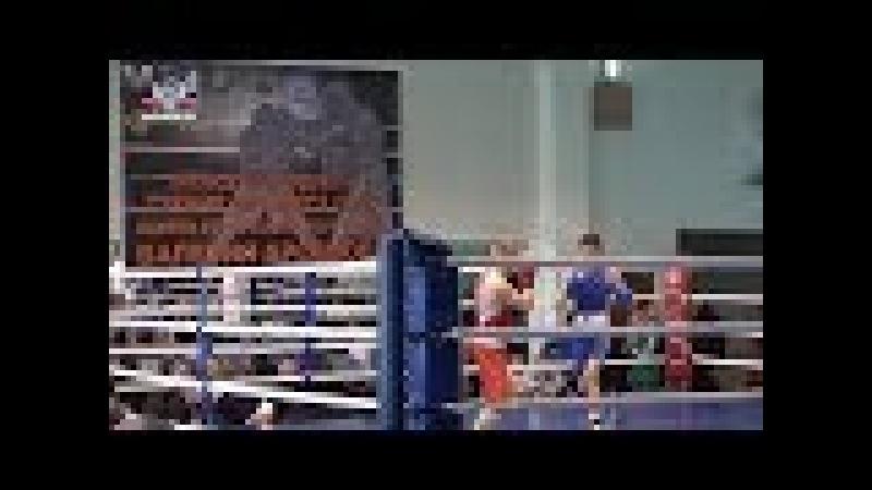 Спортсмены из Армении приняли участие в Республиканском турнире по боксу