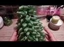Как сделать елку канзаши самый простой способ Christmas tree✔ Marine DIY Guloyan✔