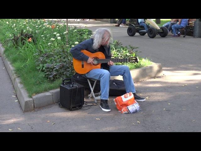 Уличный музыкант гитарист. Парк Горького.