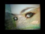 ZUCCHERO &amp RANDY CRAWFORD - Diamante (Domenica)