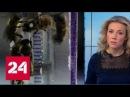 Таинственное исчезновение насекомых европейские ученые бьют тревогу - Россия 24