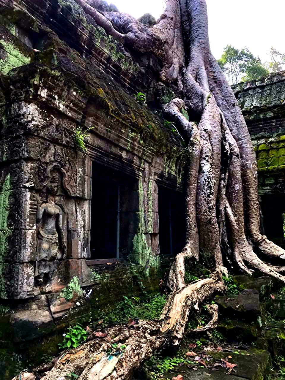 Елена Руденко (Валтея). Камбоджа. Ангкор. Fm7LPmBzVq0