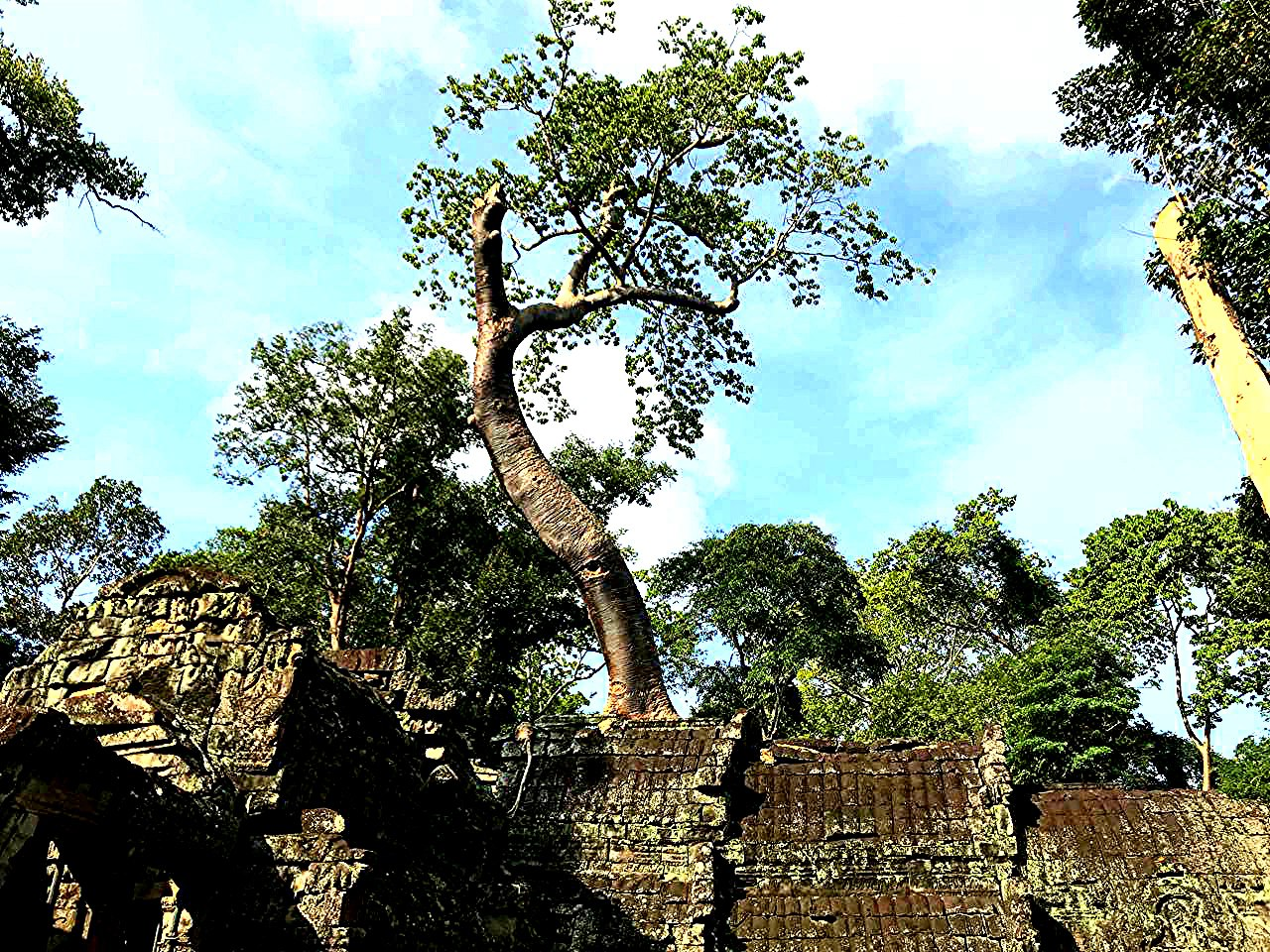 Елена Руденко (Валтея). Камбоджа. Ангкор. CWsRFgjGurw