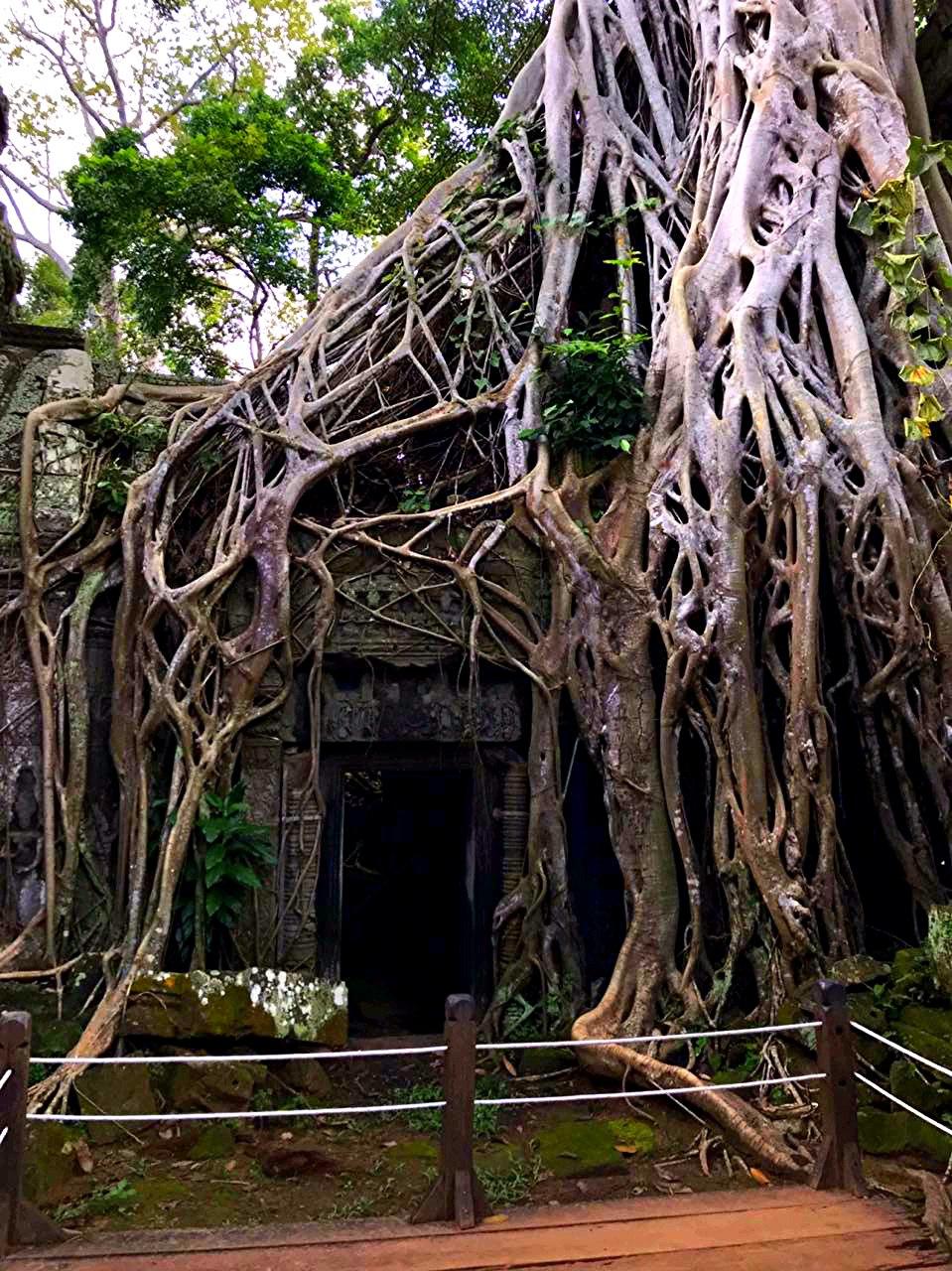 Елена Руденко (Валтея). Камбоджа. Ангкор. 5Ka_vH4UPII