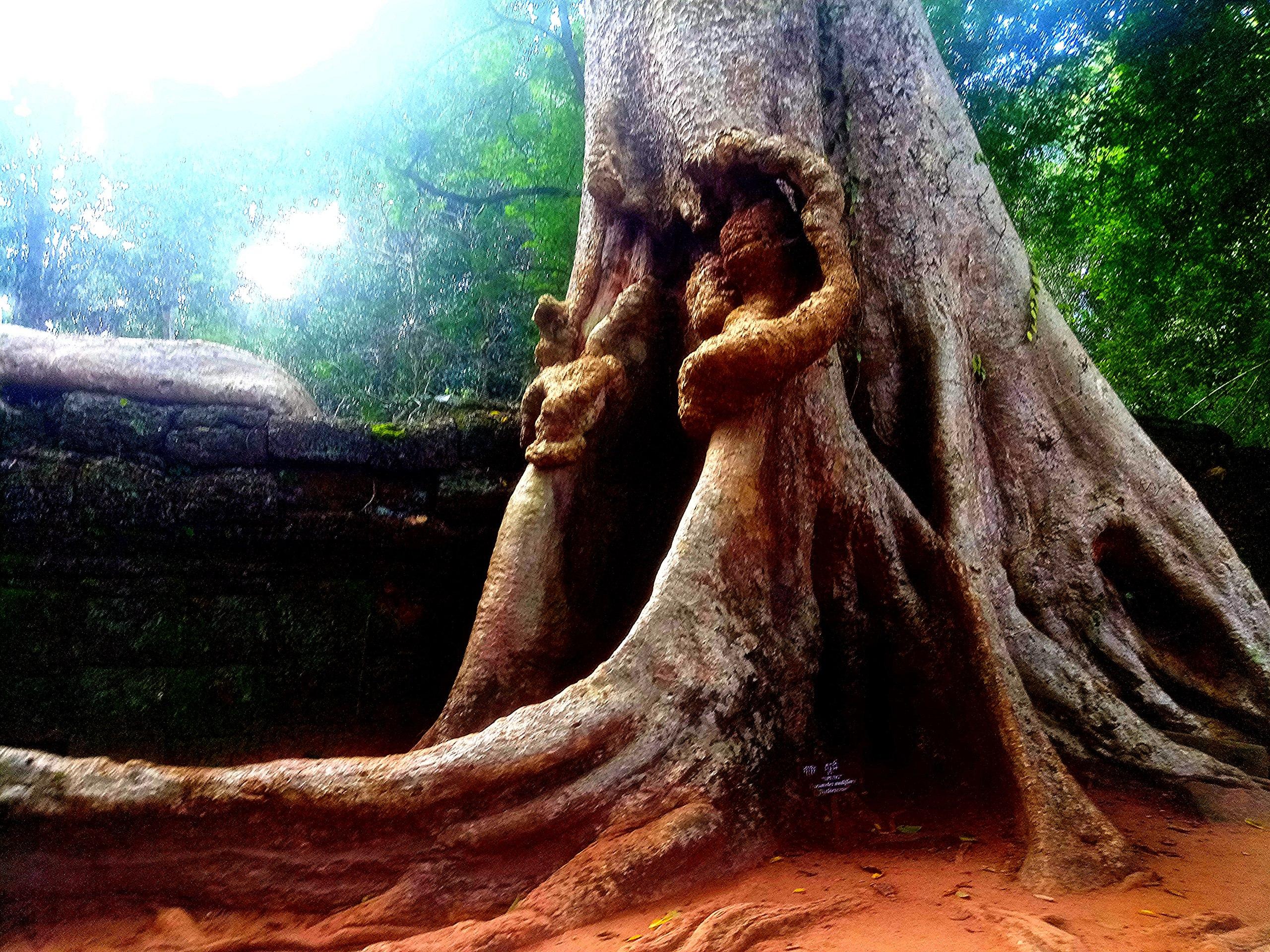 Елена Руденко (Валтея). Камбоджа. Ангкор. - Страница 3 YqR2lbJg8OM