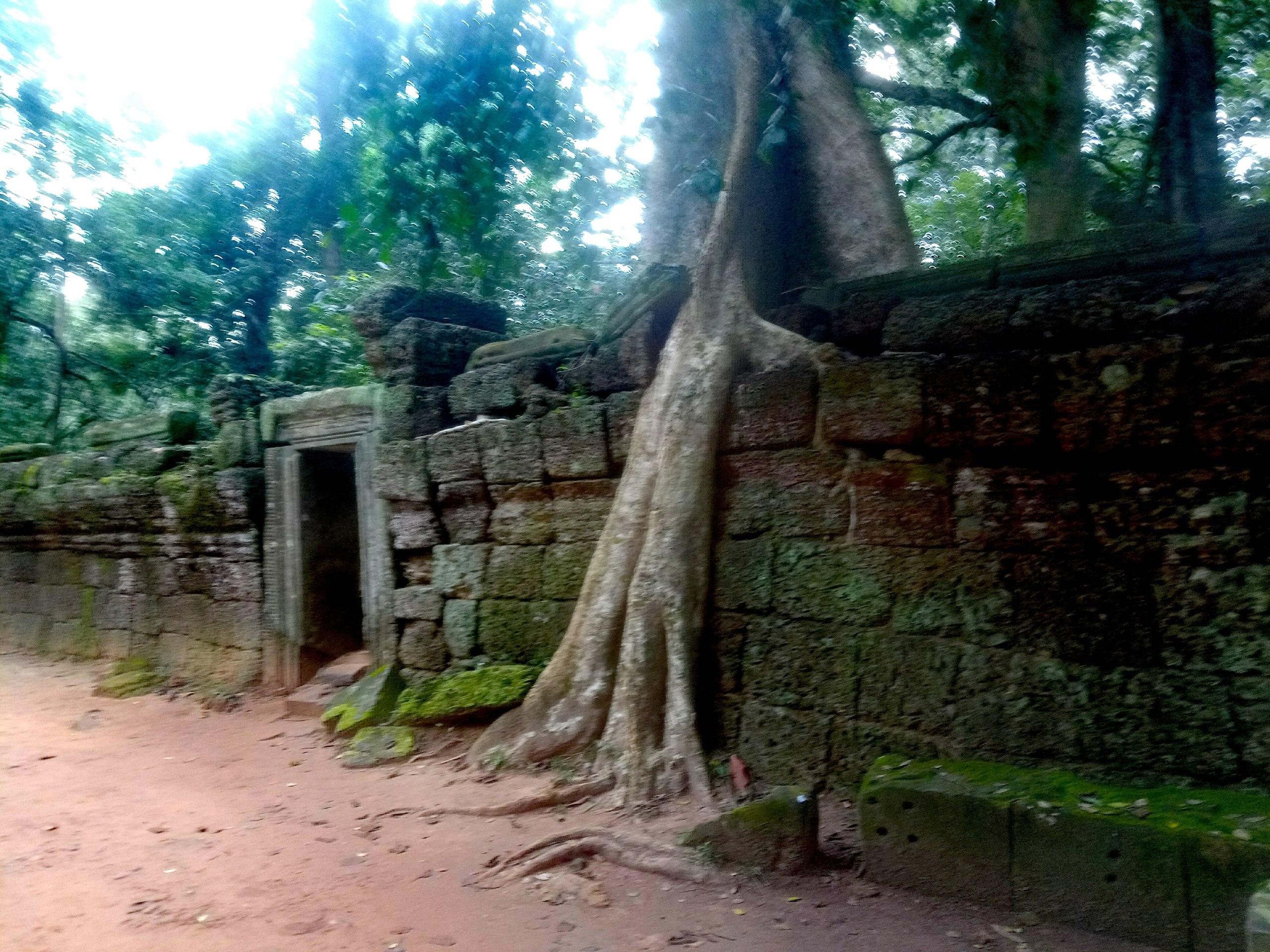 Елена Руденко (Валтея). Камбоджа. Ангкор. - Страница 3 FfgWkK-Qwqs