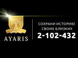 Ярко Егор Игоревич. Аярис