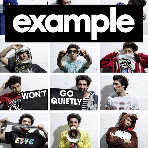 Example альбом Won't Go Quietly