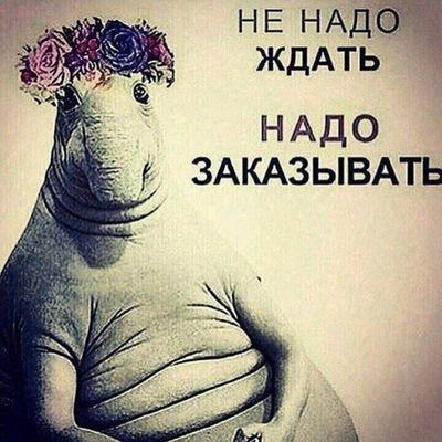 Артем Невзоров