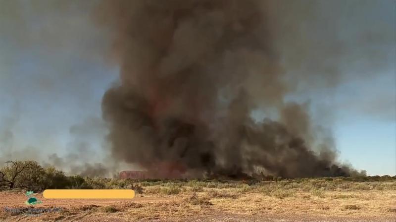 Огненный торнадо_ Огненный смерч или Зарождение торнадо_ Высота до 5км температура до 1000С