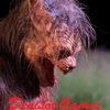DenisovGames - канал страха