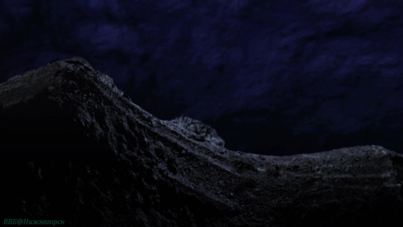 BBC «Сокрытые миры (1). Под открытым небом» (Документальный, природа, животные, 2014)