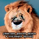 Фото Дмитрия Сербина №25