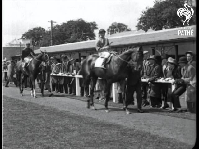 Embargo Wins Irish Derby (1926) | British Pathé