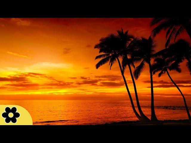 Sleep Music, Calm Music for Sleeping, Delta Waves, Insomnia, Relaxing Music, 8 Hour Sleep, ✿3271C