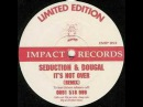 Seduction And Dougal - It's Not Over (Remix)