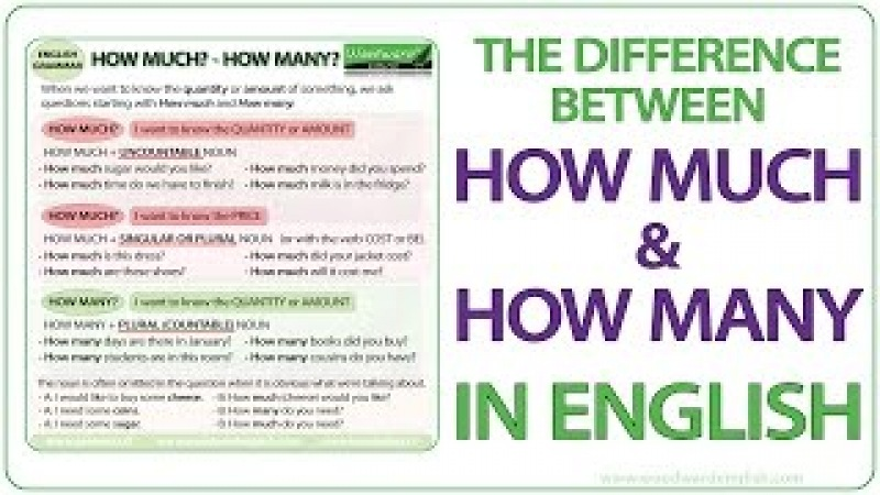 How much How many - English Grammar Lesson