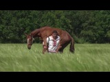 любэ конь carrying on the shoulders a horse the weight of 450 kg