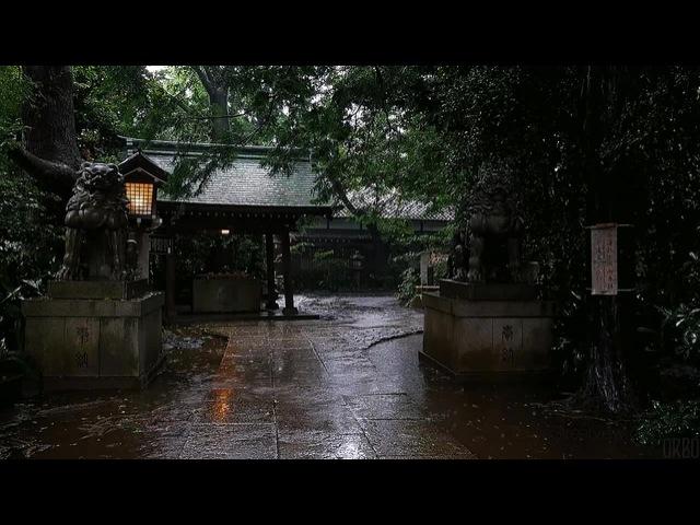 Summer rain in Okusawa, Tokyo. · coub, коуб