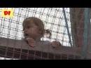 ♕ Диана в детском сказочном парке Лукоморье Совхоз имени Ленина Москва Парк ска