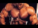 Jay Cutler - UNDERDOG TO MR. OLYMPIA TRANSFORMATION - Ultimate Gym Motivation