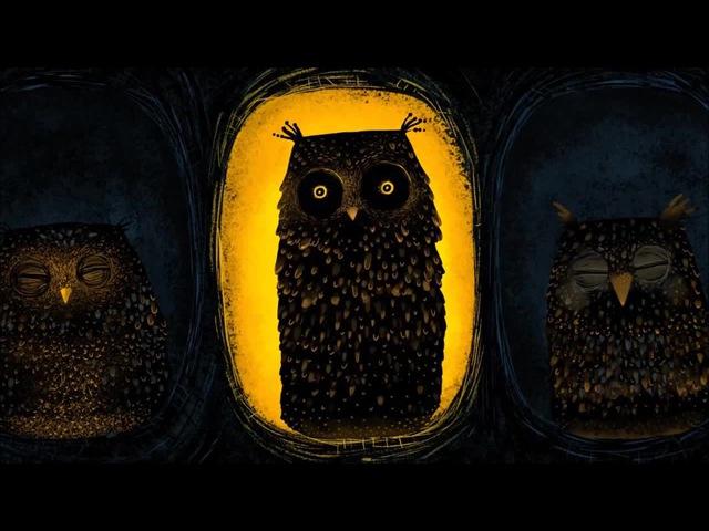Owls Tender