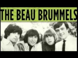 The Beau Brummels - Gentle Wanderin Ways..