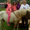 Верховая езда на пони