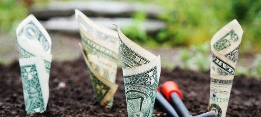 Праналтзировать деньги тебе дают роскошь не думать о деньгах