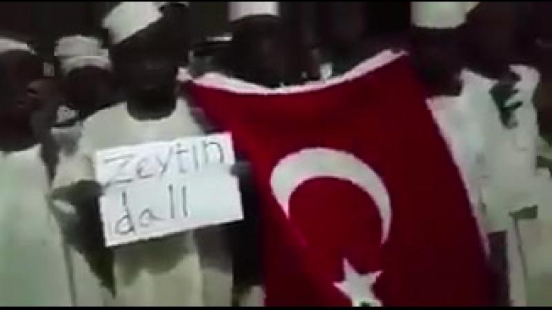 Мусульмане Африки вышли на улицы и делают коллективный Дуа за победу Турции