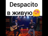 Деспасито,в живую,гитара,музыкант,хорошо поет,красиво спел,до мурашек