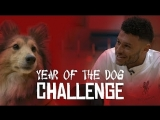 Chinese New Year | Liverpool stars take on Year of the Dog challenge