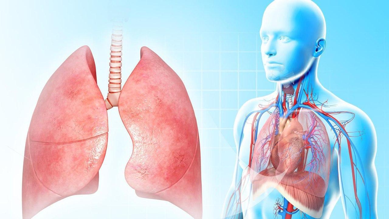 Пневмония: симптомы, причины и лечение