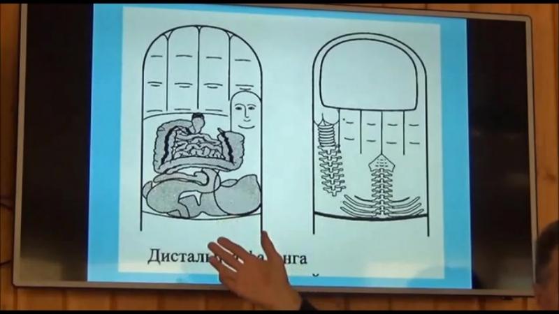 Сергей Голиков Биометрические маркеры