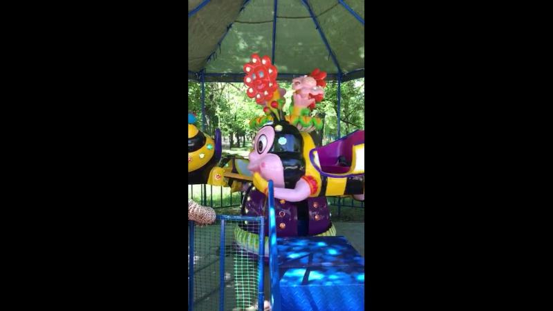 Beston Аттракцион полёт пчёлки в Укране