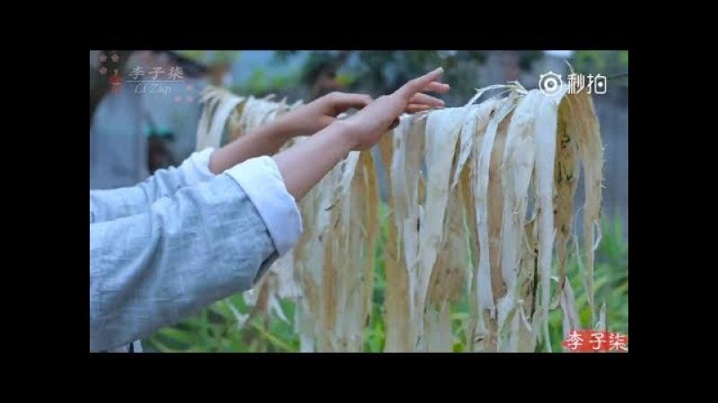 How to make the paper? (Engsub) | Li Ziqi 李子柒