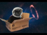 Cat In a Box - Shooting Stars Bag Raiders